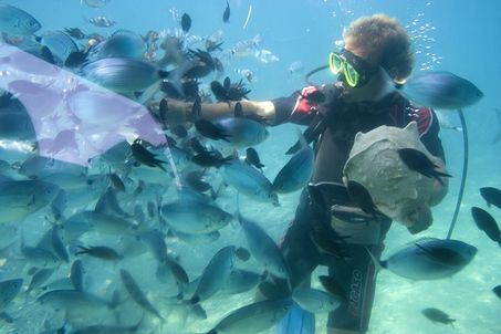 Choose the right spots to snorkel in Bali