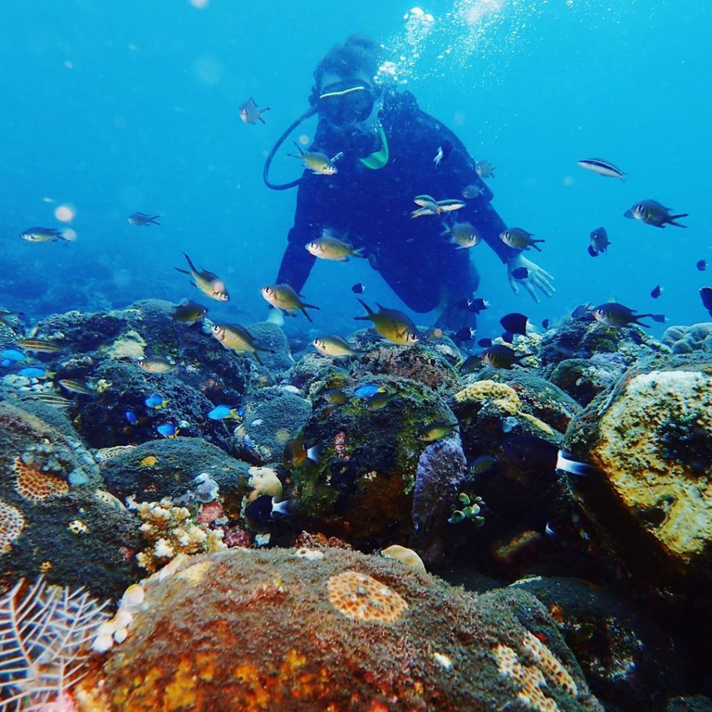 5 Thing You Should Know Before Heading for Diving in Tulamben Bali