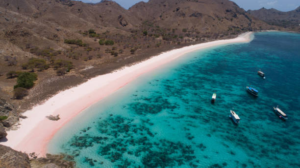 Sailing Komodo Tour